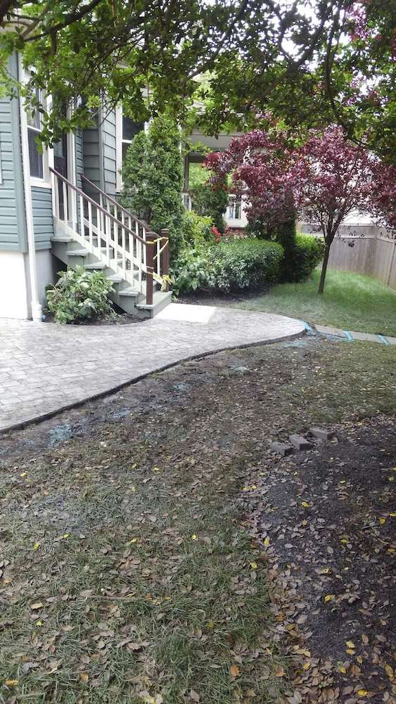 Stamped Concrete Backyard After Photo